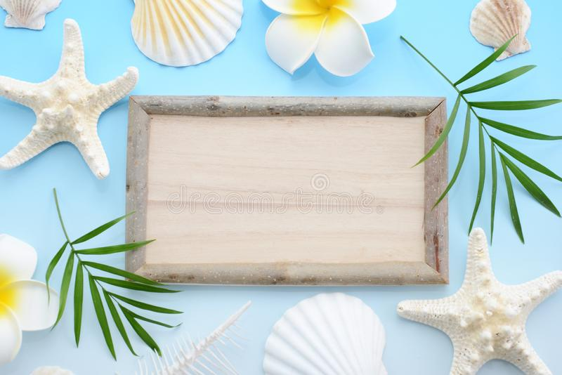 Wooden signboard. With sea shells royalty free stock photos