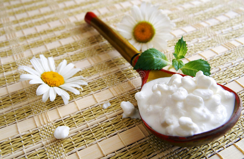 Wooden spoon with cottage cheese royalty free stock images
