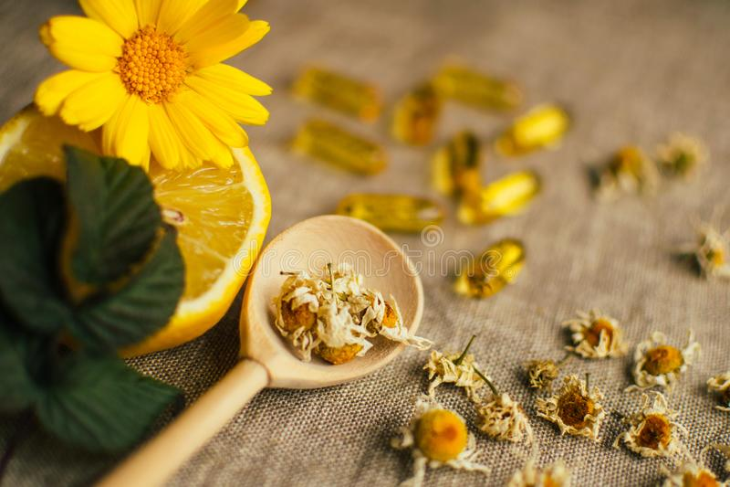 Wooden spoon with dry chamomile flowers, lemon, calendula, raspberry leaf and blurred fish oil capsule on linen fabric at the royalty free stock photo