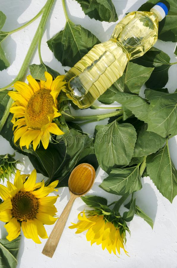 Vertical shot. Plastic bottle of sunflower oil and wooden spoon of oil on the green leaves, blooming sunflowers, top view. Wooden spoon of seeds, sunflowers and stock images