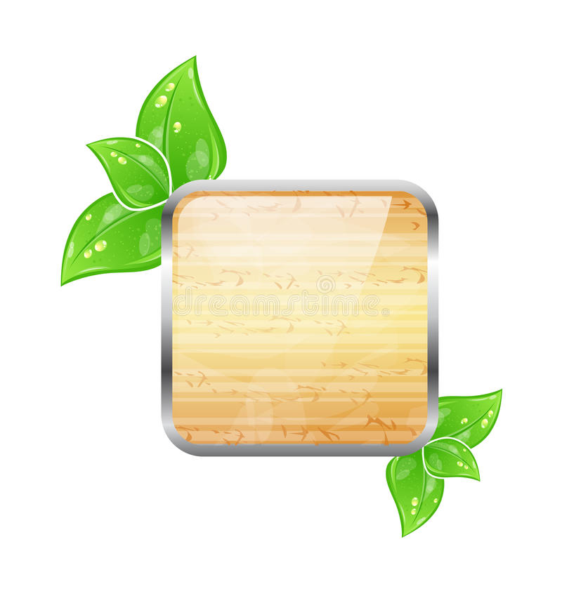 Wooden Square Board With Eco Green Leaves Stock Image