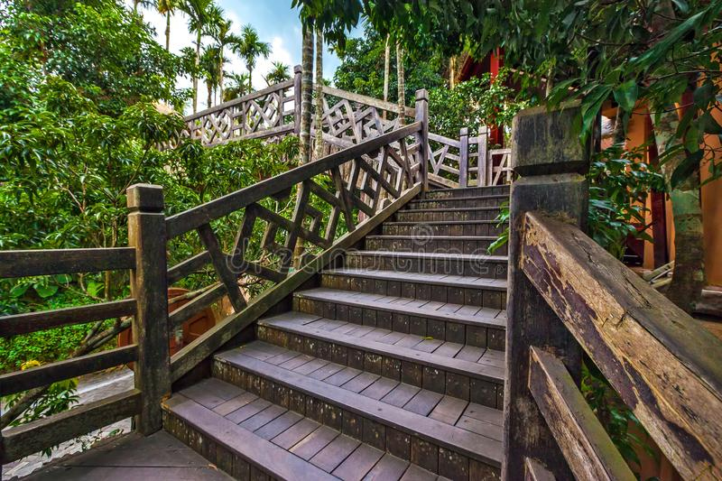 Wooden staircase to the bridge. Sanya Li and Miao Village. Hainan, China. The jungle is the most interesting thing that there is on the Sanya island for the royalty free stock images