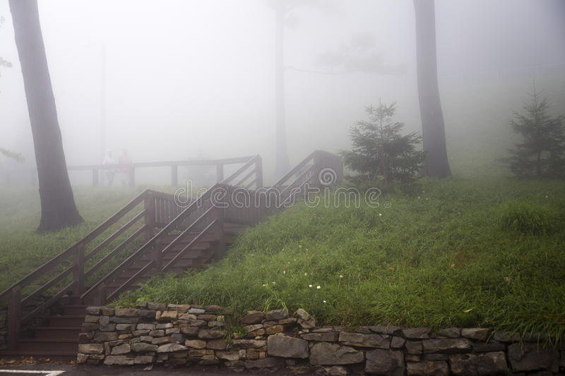 Wooden Stairs on Foggy Grass Covered Hill stock photography