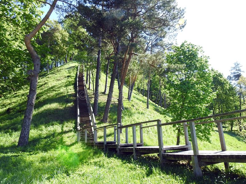 Wooden stairs going on hill top, Lithuania royalty free stock image