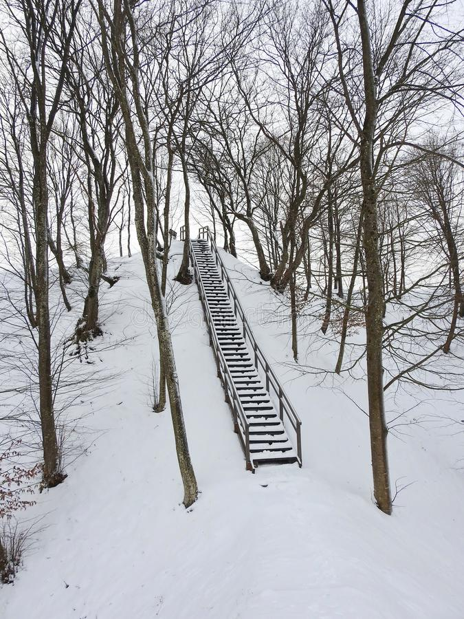 Wooden stairs on old mound, Lithuania royalty free stock images