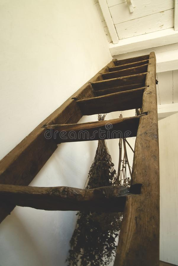 Old, wooden stairs / ladder to the attic. royalty free stock photo