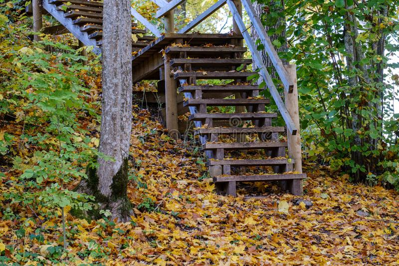 wooden stairs to watch tower in wet colored autumn day in countryside royalty free stock image