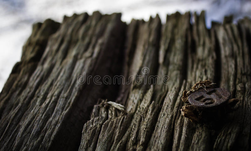 Wooden stake with number 57 royalty free stock photography