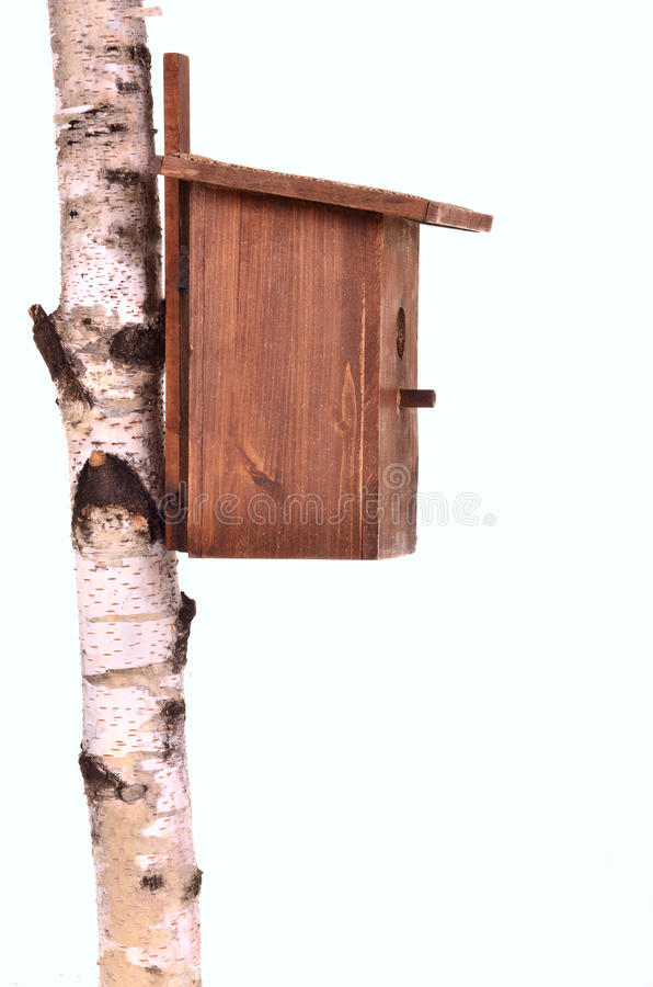 Wooden starling-house on a birch trunk isolated stock photography