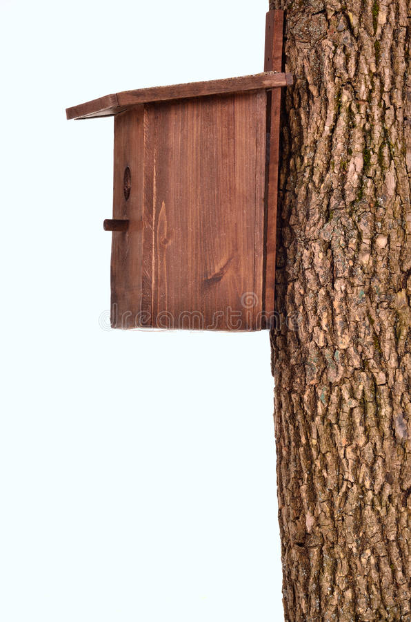 Free Wooden Starling-house On A Bole Isolated Stock Images - 19381964