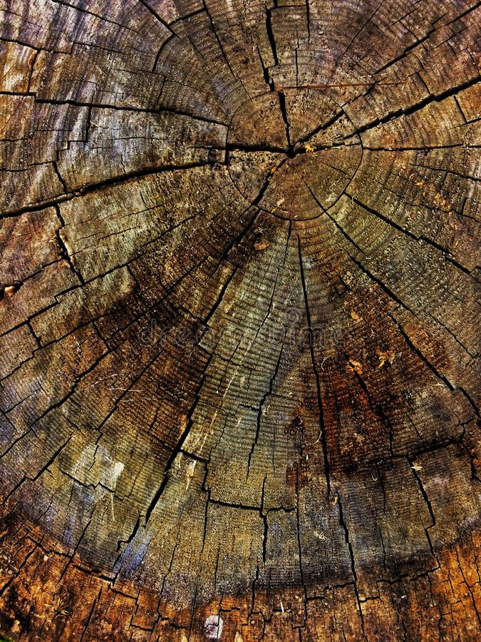 Old wooden stub background royalty free stock photos