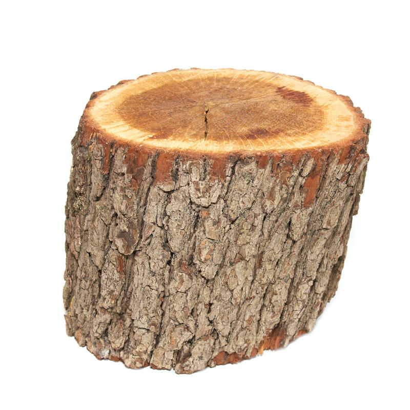 Download Wooden Stump Royalty Free Stock Photos - Image: 10521878
