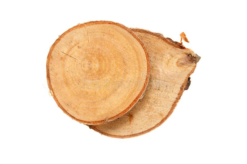 Wooden stump isolated on the white background. Round cut down tree with annual rings as a wood texture stock photo