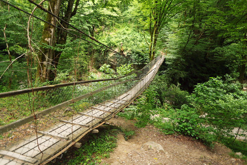 Wooden suspension bridge in wood royalty free stock photo