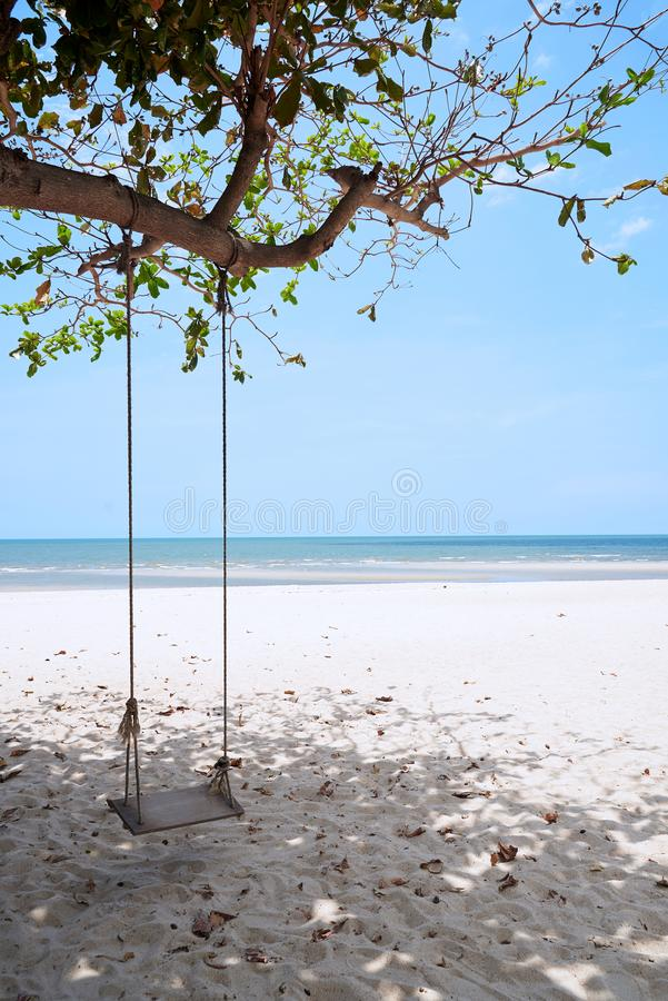 A wooden swing on the beach stock photography