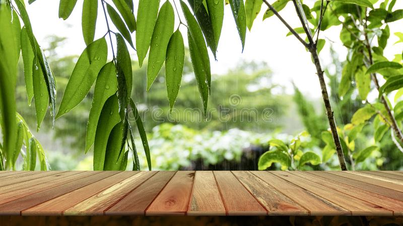 Wooden table and blurred green leaf nature in garden background. Free place for creativity. Background royalty free stock photo