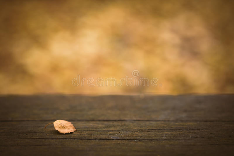 Wooden table with fall or autumn nature bokeh background. Blurred leaves and branches. royalty free stock photography