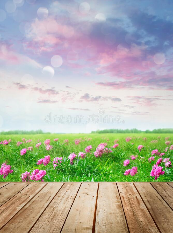 Wooden table with flowers in meadow stock images