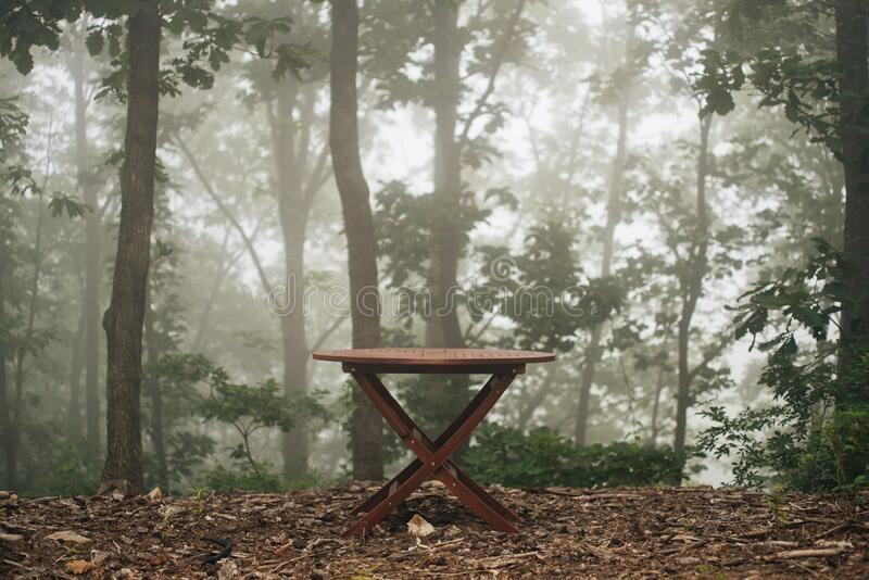 Wooden table in foggy woods royalty free stock photos