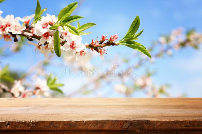 Wooden table in front of spring blossom tree landscape. Product display and presentation. Wooden table in front of spring blossom tree landscape. Product royalty free stock image