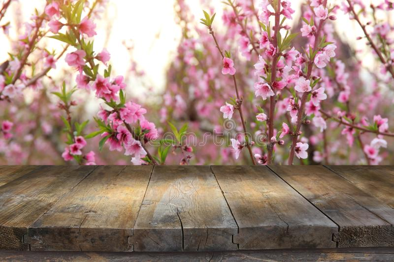 Wooden table in front of spring blossom tree landscape. Product display and presentation. Abstract advertise backdrop background beautiful blank bloom blurred stock photos