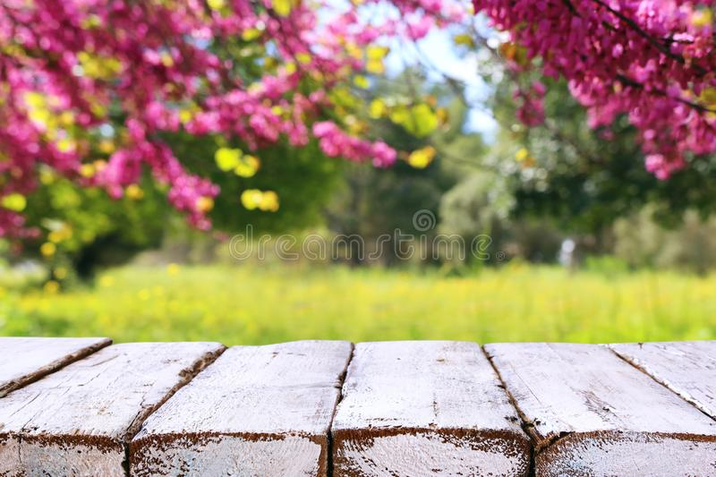 Wooden table in front of spring blossom tree landscape. Product display and presentation.  royalty free stock photo