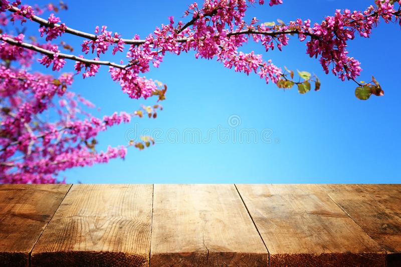 Wooden table in front of spring blossom tree landscape. Product display and presentation.  royalty free stock photos