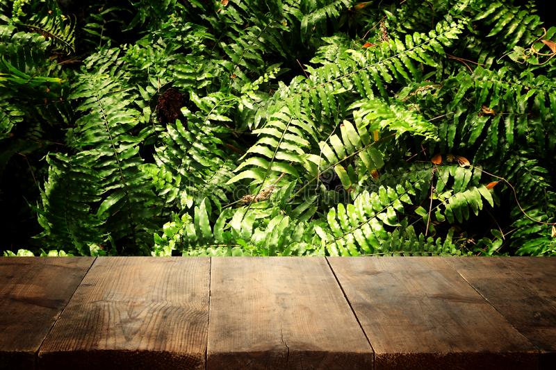 Wooden table in front of tropical green floral background. for product display and presentation.  stock images