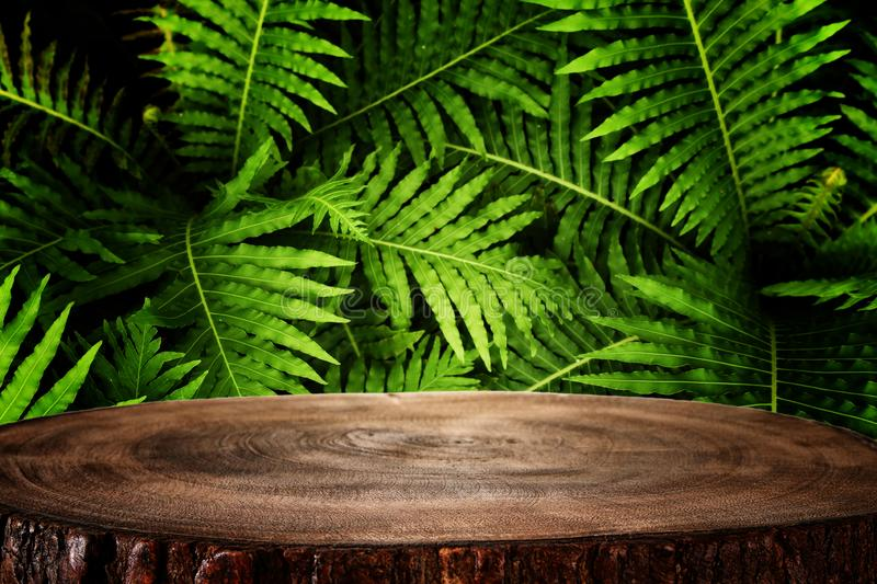Wooden table in front of tropical green floral background. for product display and presentation.  royalty free stock images