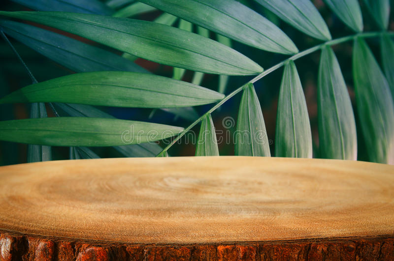 Wooden table in front of tropical green floral background. for product display and presentation.  stock photos