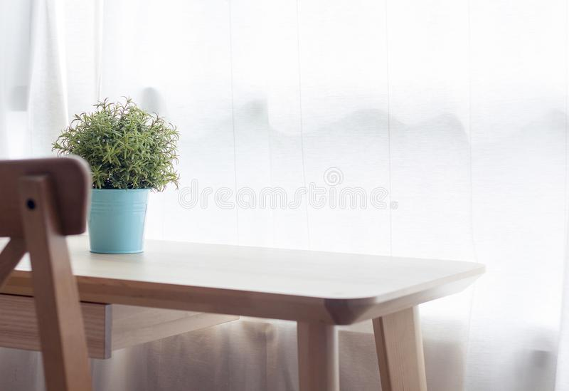 Wooden table with small green plant in pots on window stock photo