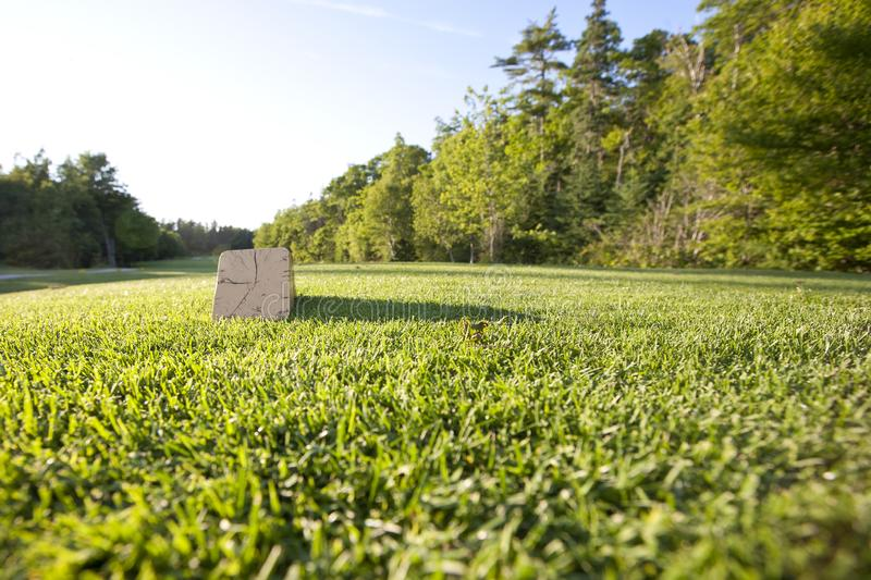 Wooden tee box. A tee box on the golf course with copy space in the grass stock photos