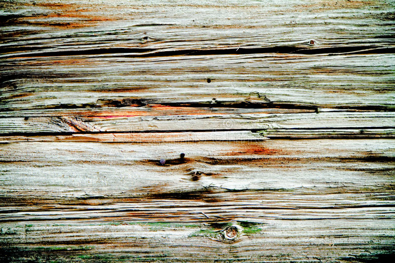 Download Wooden texture stock image. Image of burnt, board, dried - 14158053
