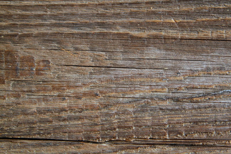 Wooden texture in antique look royalty free stock photography