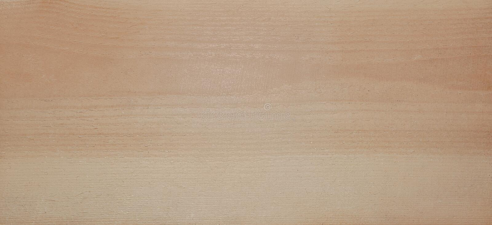 Wooden texture background. light pine wood Board surface sawn royalty free stock photo