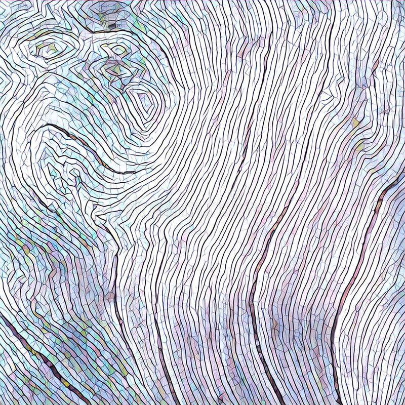 Wooden texture close up photo. White and grey wood background. Paper drawing of wood. Rustic timber digital illustration. Curves and lines on rough old tree stock illustration
