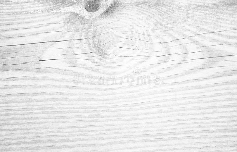 Wooden texture close up. White wooden background. Monochrome wood. Timber textured board. Grey stripes plank pattern. Curves on ro. Ugh old tree. Natural timber stock images