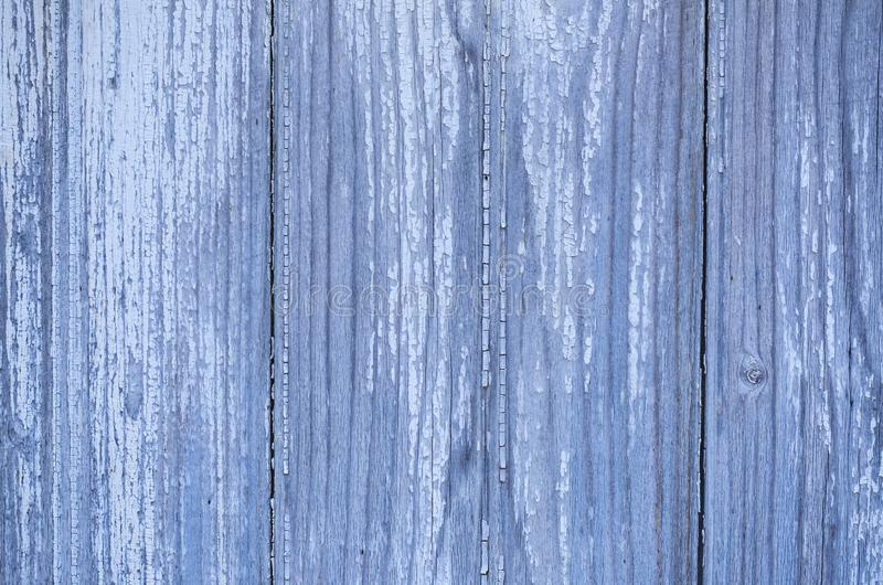 Close up of wood texture that has a blue tint. Wooden texture up close with a blue tint stock photos