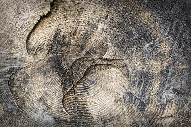 Wooden textured surface stock images