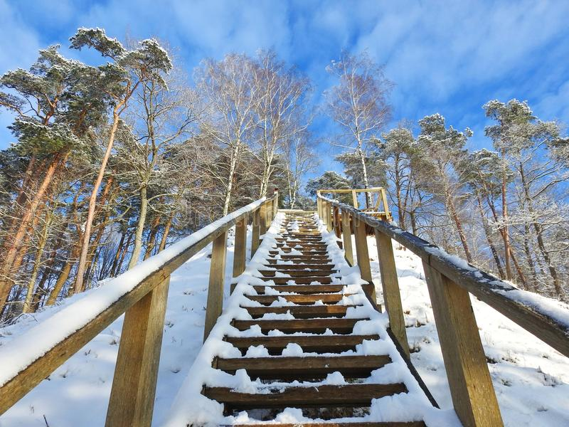 Wooden upstairs going on hill top, Lithuania royalty free stock image