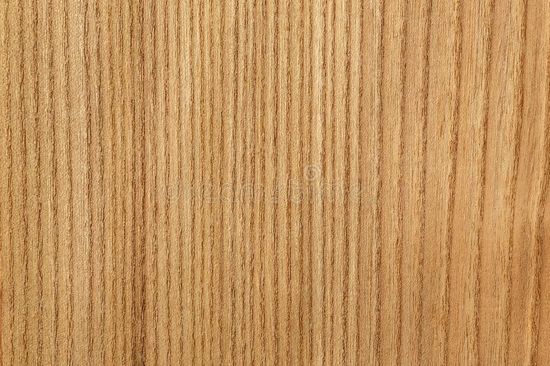 Wooden veneer to use as a background royalty free stock images