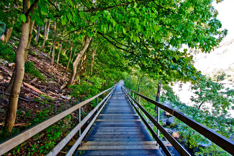 Wooden walk way by the river stock photography