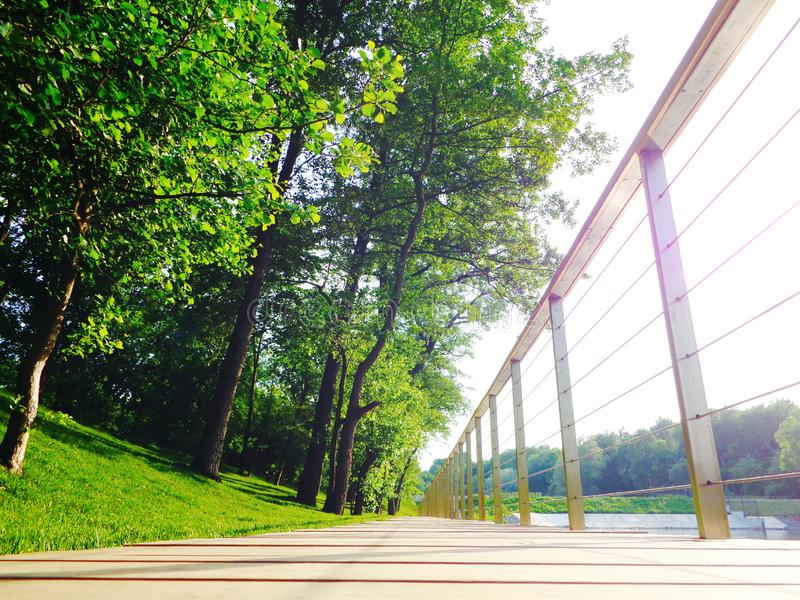 Wooden walking path in nice green city park royalty free stock images