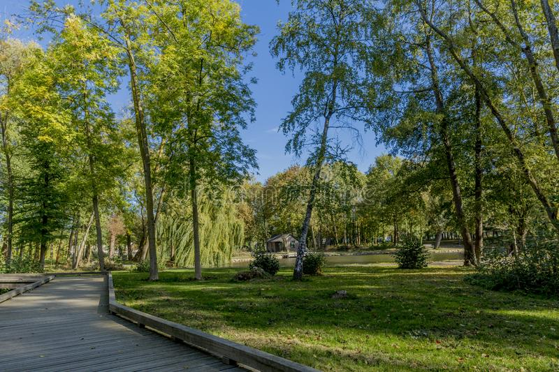 Wooden walkway in the park on a sunny autumn day. In Voerendaal South Limburg in the Netherlands Holland royalty free stock image