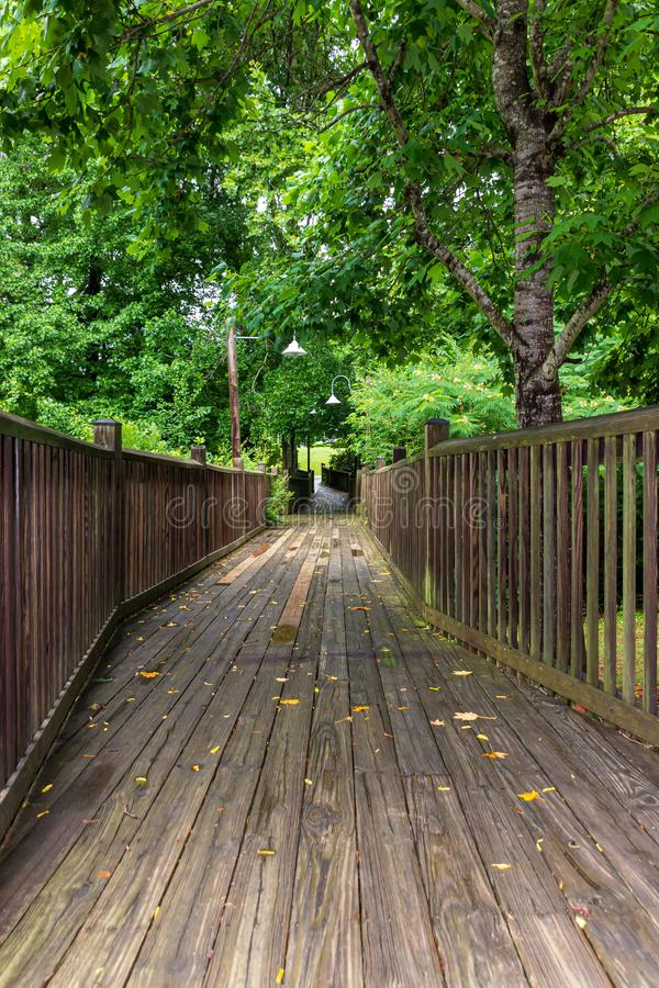 A wooden walkway winds through a forest and over a creek. stock photos