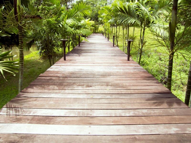 wooden walkways stock image image of beauty boardwalk 33563931. Black Bedroom Furniture Sets. Home Design Ideas