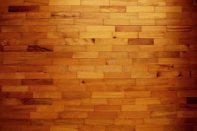 Wooden wall background, texture of bark wood with old natural pattern for design art work.  royalty free stock images