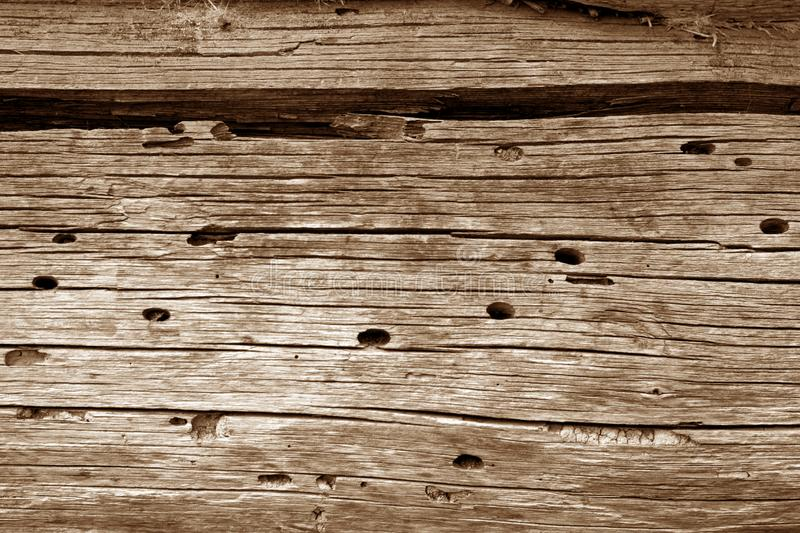 Wooden wall texture in brown color. Abstract background and texture for design, vintage, old, weathered, timber, tree, carpentry, natural, painted, materials royalty free stock photography