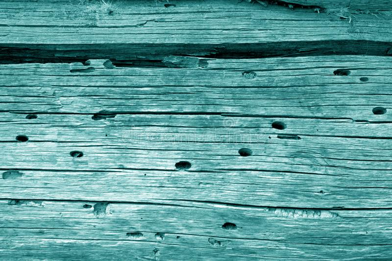 Wooden wall texture in cyan color. Abstract background and texture for design, blue, green, vintage, old, weathered, timber, tree, carpentry, natural, painted stock image