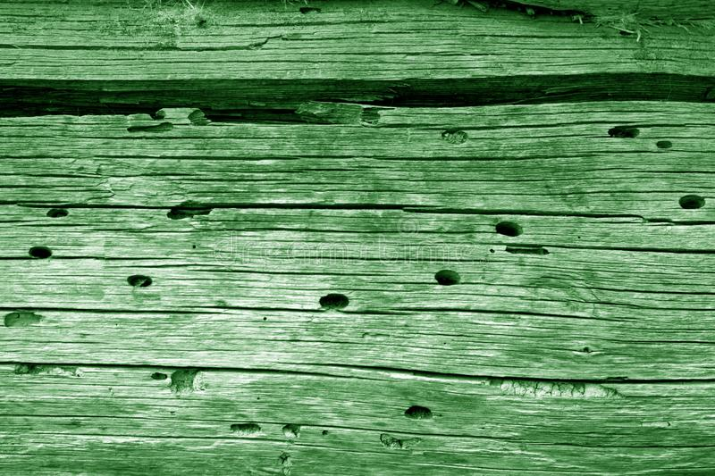 Wooden wall texture in green color. Abstract background and texture for design, vintage, old, weathered, timber, tree, carpentry, natural, painted, materials stock photos